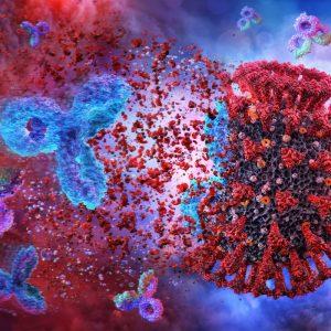Serológica SARS-COV-2 detección cualitativa IGG (Post vacuna)